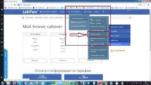 Регистрация домена. Хостинг LeoHost.
